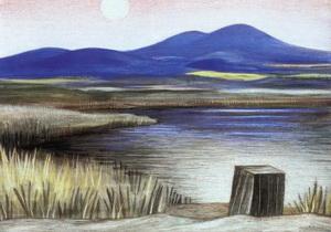 Jan Zrzavý - Vodňanský rybník